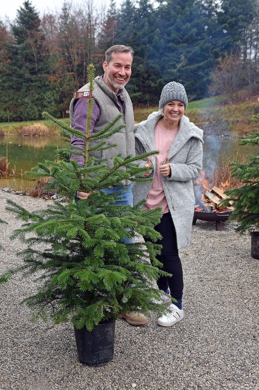 Was Kostet Ein Weihnachtsbaum